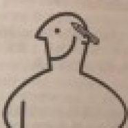 Рисунок профиля (D.Prinz)